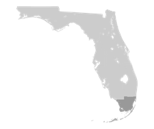 FDOT-District6