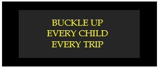 buckle up every child every trip